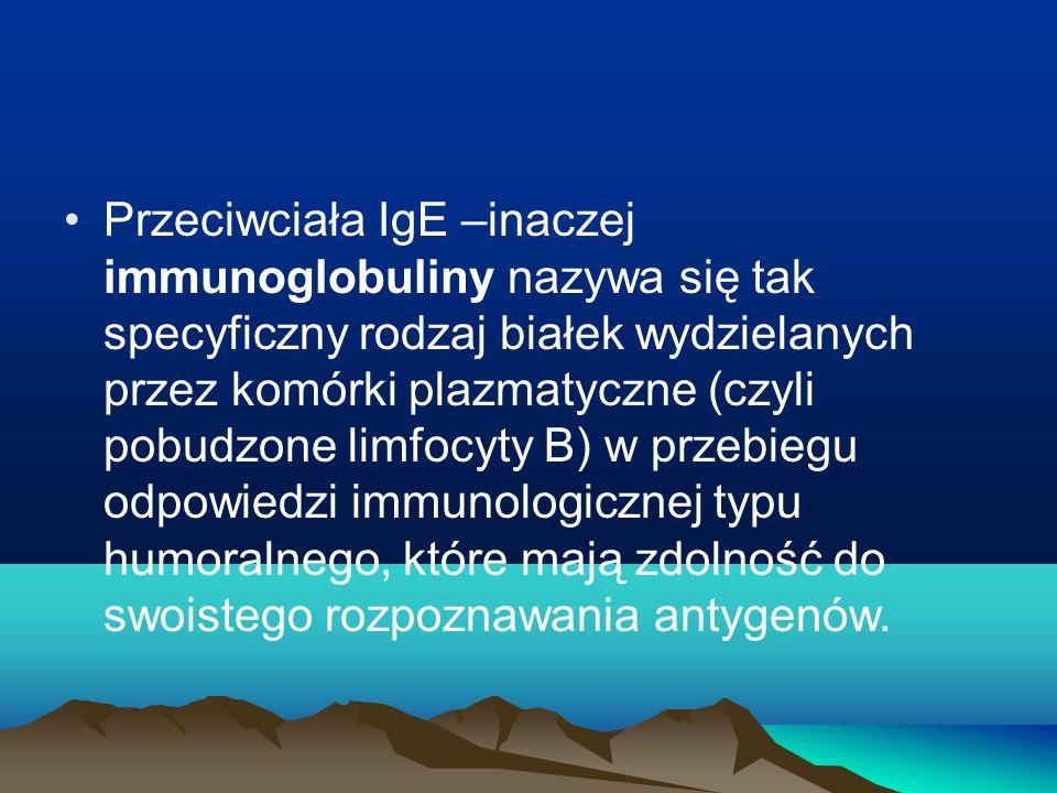 Przeciwciała IgE –inaczej immunoglobuliny nazywa się tak specyficzny rodzaj białek wydzielanych przez komórki plazmatyczne (czyli pobudzone limfocyty