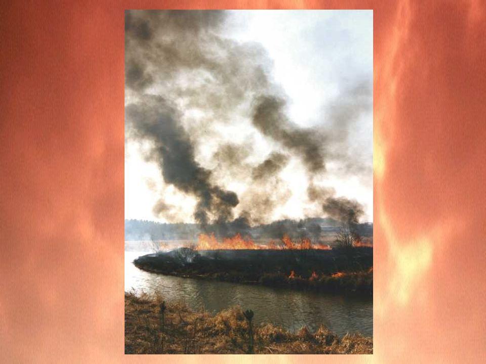 Warto wiedzieć Godzina pracy jednego zastępu straży pożarnej kosztuje ok.