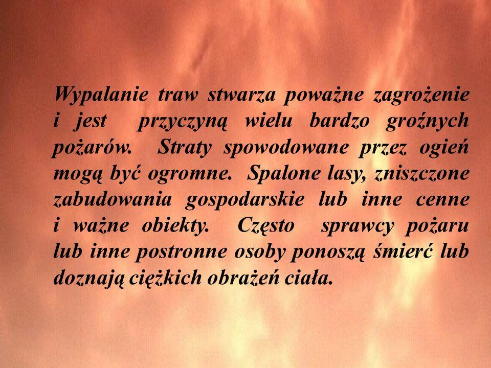 Wypalanie traw stwarza poważne zagrożenie i jest przyczyną wielu bardzo groźnych pożarów. Straty spowodowane przez ogień mogą być ogromne. Spalone las