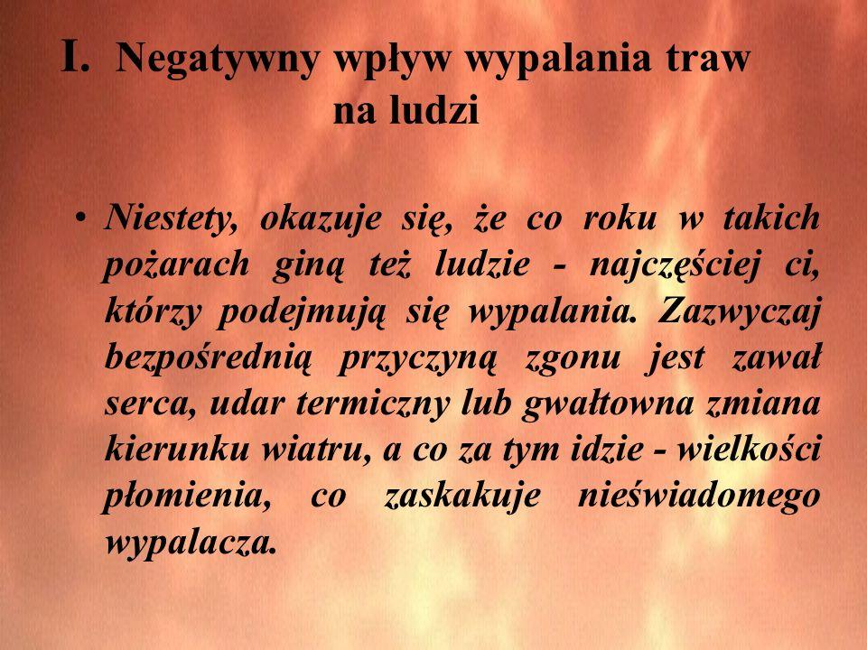 I. Negatywny wpływ wypalania traw na ludzi Niestety, okazuje się, że co roku w takich pożarach giną też ludzie - najczęściej ci, którzy podejmują się