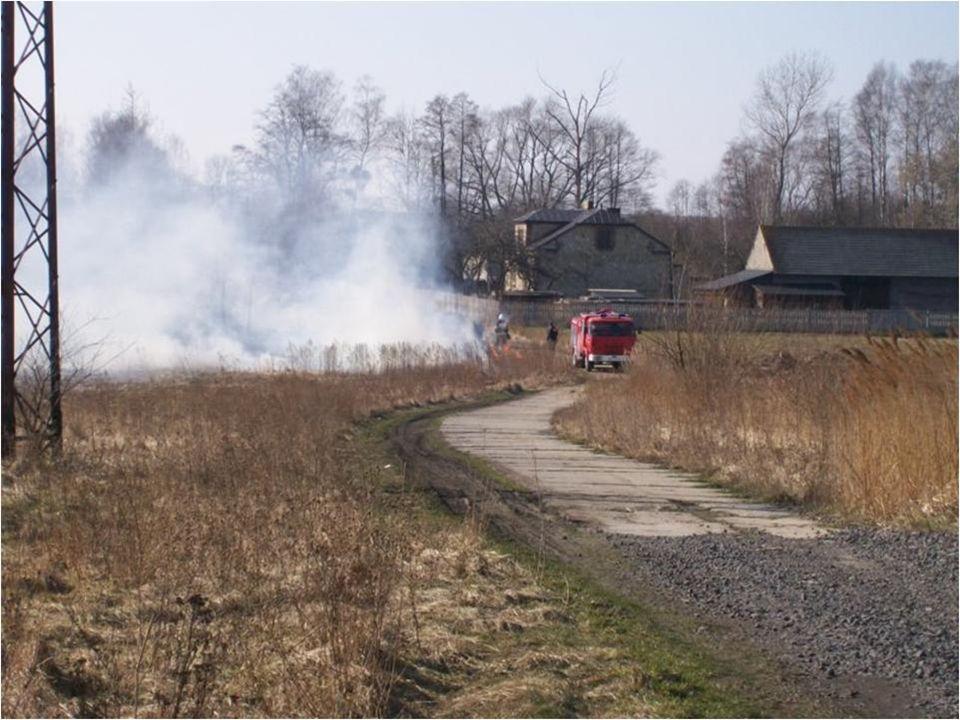 Wypalanie to jedna z istotnych przyczyn zatruwania i tak już nadmiernie zanieczyszczonej atmosfery - tysiące pożarów w skali kraju wiąże się z wyrzucaniem do niej dziesiątków ton tlenku węgla oraz innych niebezpiecznych związków chemicznych.