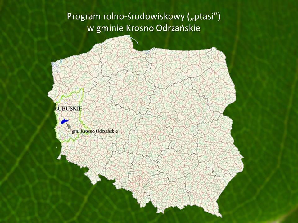 Program rolno-środowiskowy (ptasi) w gminie Krosno Odrzańskie