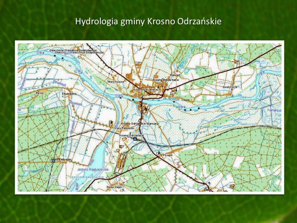 Hydrologia gminy Krosno Odrzańskie