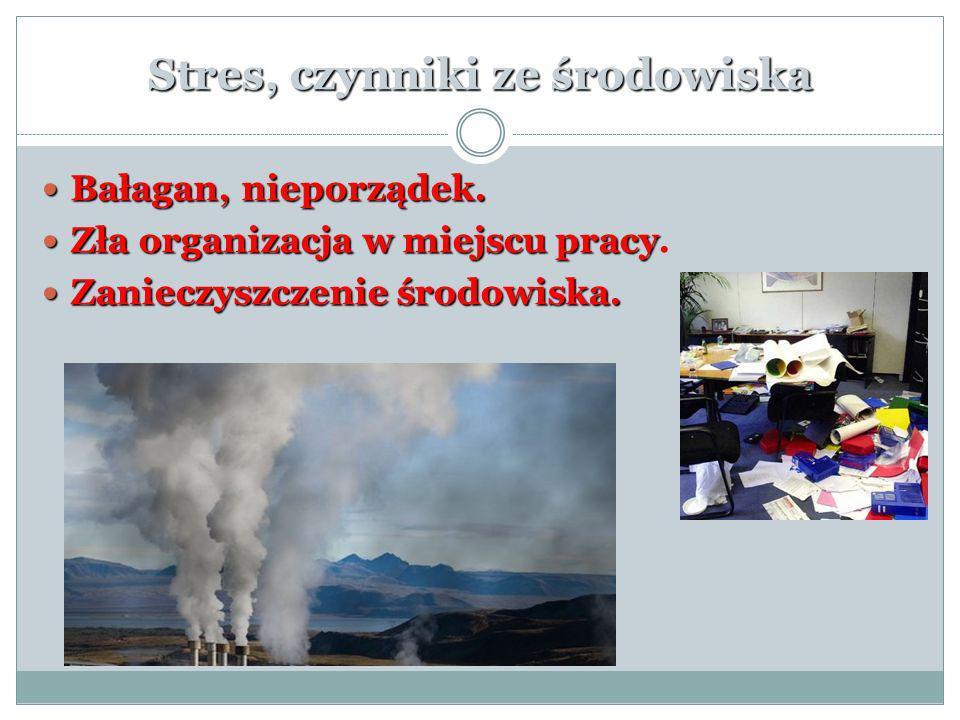 Stres, czynniki ze środowiska Bałagan, nieporządek. Bałagan, nieporządek. Zła organizacja w miejscu pracy Zła organizacja w miejscu pracy. Zanieczyszc