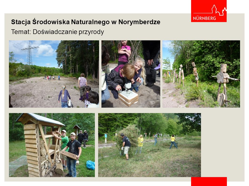 Stacja Środowiska Naturalnego w Norymberdze Temat: Doświadczanie przyrody