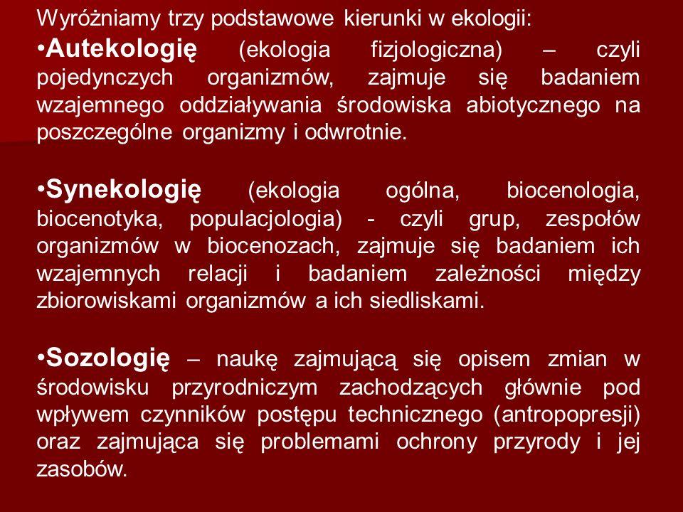 Wyróżniamy trzy podstawowe kierunki w ekologii: Autekologię (ekologia fizjologiczna) – czyli pojedynczych organizmów, zajmuje się badaniem wzajemnego oddziaływania środowiska abiotycznego na poszczególne organizmy i odwrotnie.