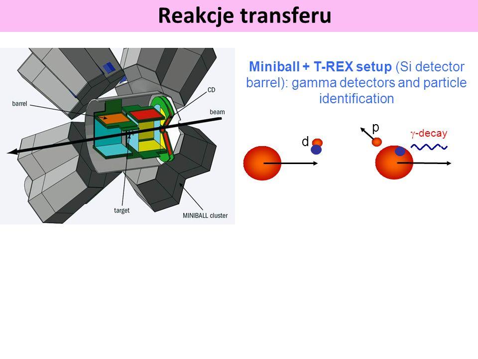 Reakcje transferu -decay d p Miniball + T-REX setup (Si detector barrel): gamma detectors and particle identification