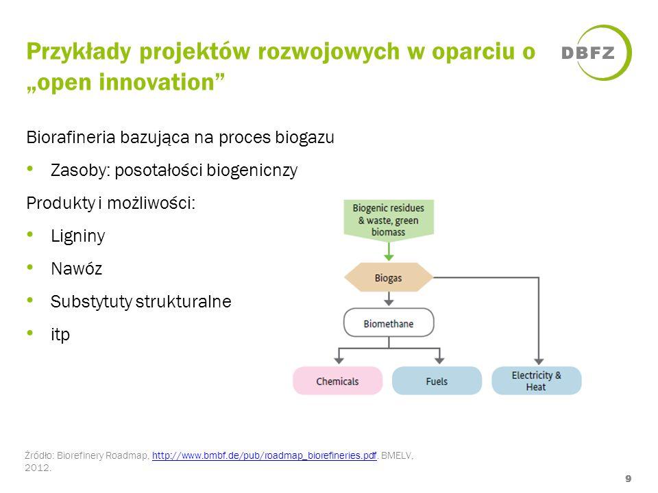 Przykłady projektów rozwojowych w oparciu o open innovation Żródło: Biorefinery Roadmap, http://www.bmbf.de/pub/roadmap_biorefineries.pdf. BMELV, 2012
