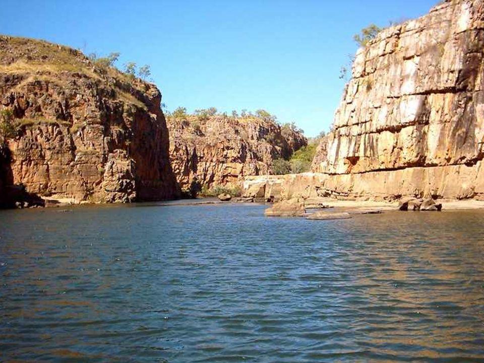 Obserwację form życia wodnego umożliwiają rejsy po rzece South Alligator oraz po Yellow Water Billabong