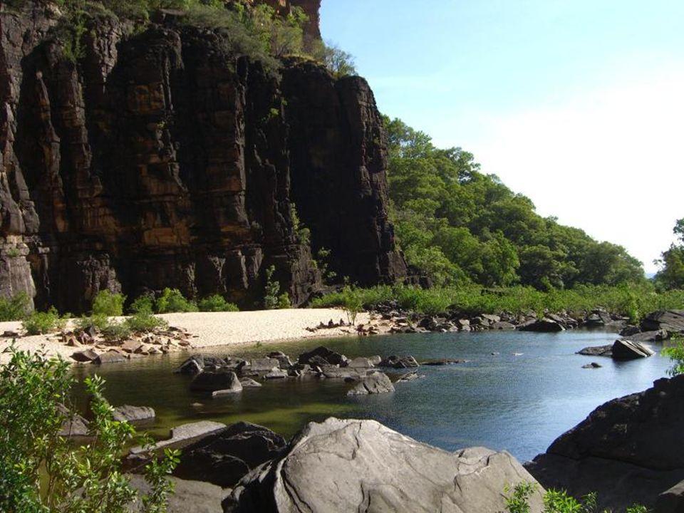 W wodospadach Twin i Jim Jim żyją słodkowodne krokodyle, które uważa się za nieszkodliwe dla człowieka.