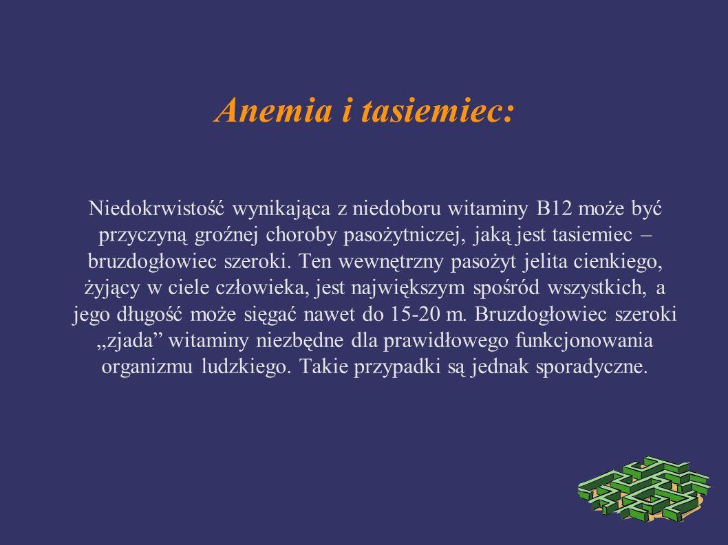 Anemia i tasiemiec: Niedokrwistość wynikająca z niedoboru witaminy B12 może być przyczyną groźnej choroby pasożytniczej, jaką jest tasiemiec – bruzdog