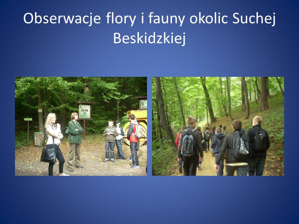 Obserwacje flory i fauny okolic Suchej Beskidzkiej