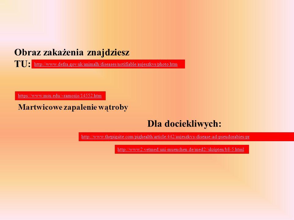 Dla dociekliwych: Martwicowe zapalenie wątroby https://www.msu.edu/~ramosjo/14552.htm http://www.thepigsite.com/pighealth/article/442/aujeszkys-diseas