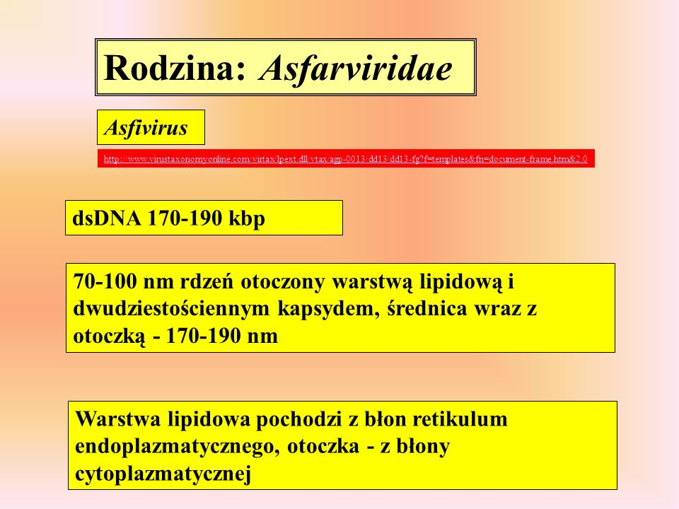 Rodzina: Asfarviridae Asfivirus http://www.virustaxonomyonline.com/virtax/lpext.dll/vtax/agp-0013/dd13/dd13-fg?f=templates&fn=document-frame.htm&2.0 d