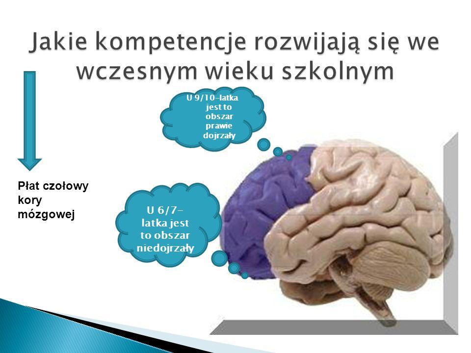 U 6/7- latka jest to obszar niedojrzały U 9/10-latka jest to obszar prawie dojrzały Płat czołowy kory mózgowej