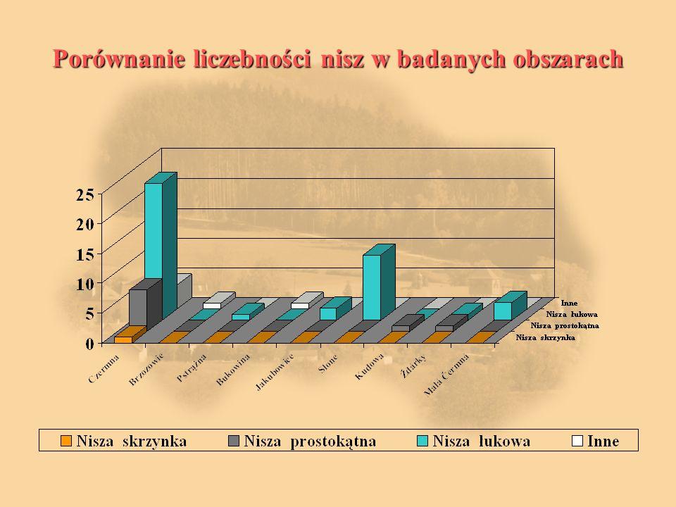 Porównanie liczebności nisz w badanych obszarach