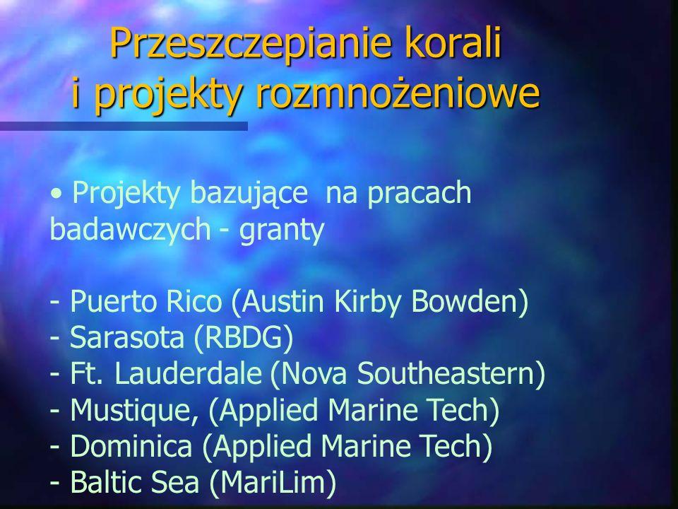 Przeszczepianie korali i projekty rozmnożeniowe Projekty bazujące na pracach badawczych - granty - Puerto Rico (Austin Kirby Bowden) - Sarasota (RBDG)
