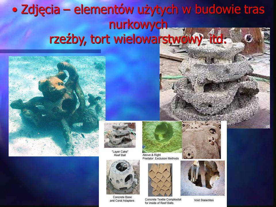 Zdjęcia – elementów użytych w budowie tras nurkowych rzeźby, tort wielowarstwowy itd. Zdjęcia – elementów użytych w budowie tras nurkowych rzeźby, tor
