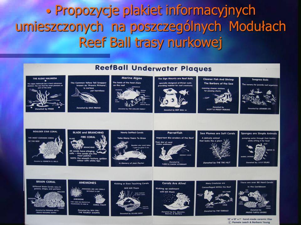 Propozycje plakiet informacyjnych umieszczonych na poszczególnych Modułach Reef Ball trasy nurkowej Propozycje plakiet informacyjnych umieszczonych na