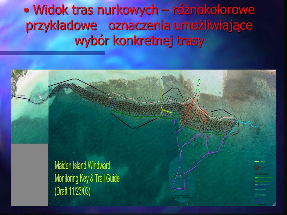 Widok tras nurkowych – różnokolorowe przykładowe oznaczenia umożliwiające wybór konkretnej trasy Widok tras nurkowych – różnokolorowe przykładowe ozna