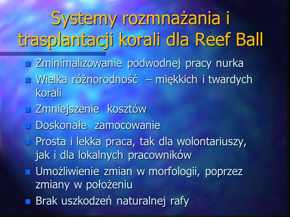 Systemy rozmnażania i trasplantacji korali dla Reef Ball n Zminimalizowanie podwodnej pracy nurka n Wielka różnorodność – miękkich i twardych korali n