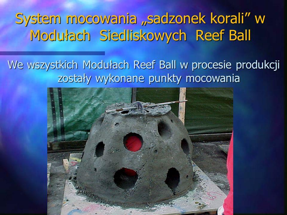 System mocowania sadzonek korali w Modułach Siedliskowych Reef Ball We wszystkich Modułach Reef Ball w procesie produkcji zostały wykonane punkty moco