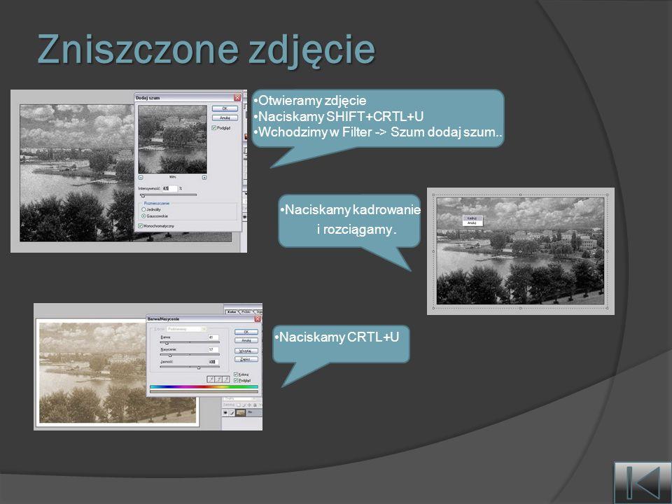 Zniszczone zdjęcie Otwieramy zdjęcie Naciskamy SHIFT+CRTL+U Wchodzimy w Filter -> Szum dodaj szum..