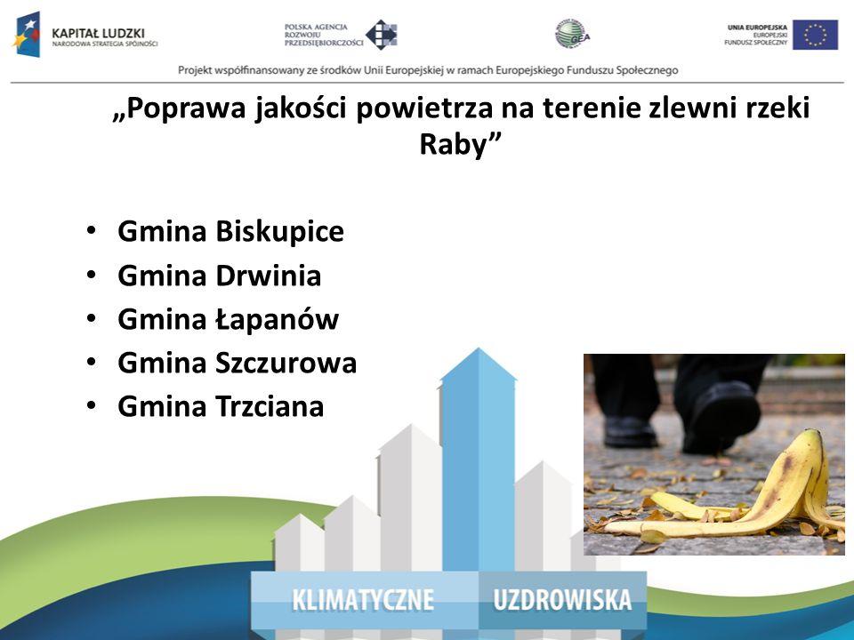 Poprawa jakości powietrza na terenie zlewni rzeki Raby Małopolski Regionalny Program Operacyjny 2007-2013 7.
