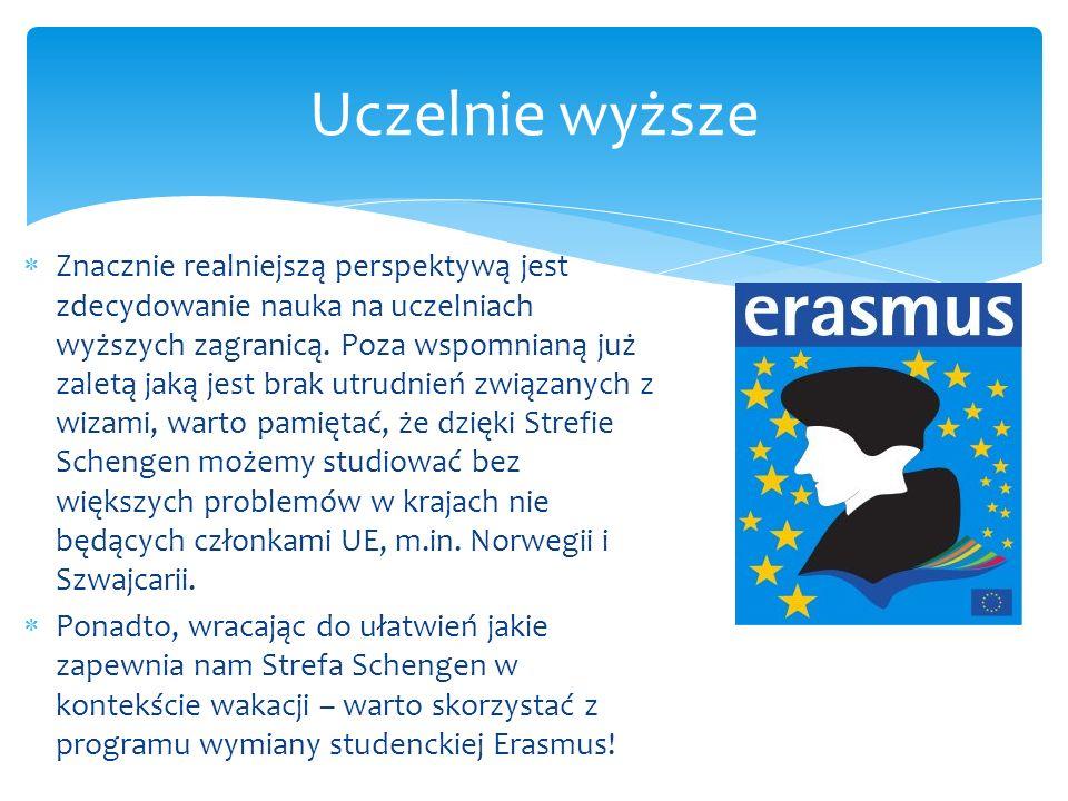 Brak kontroli granicznych, który zapewnia Układ z Schengen, może prowadzić do następujących zagrożeń: Swobodne przemieszczanie się imigrantów spoza UE znajdujących się na terenie Strefy (vide – problem UK) Przestępcy mogą łatwo zbiec do innych krajów Niekontrolowany przepływ narkotyków z krajów gdzie są one legalne do pozostałych państw Masowa emigracja z jednych państw do drugich (obecny problem Polski jako państwa) Wady Strefy Schengen