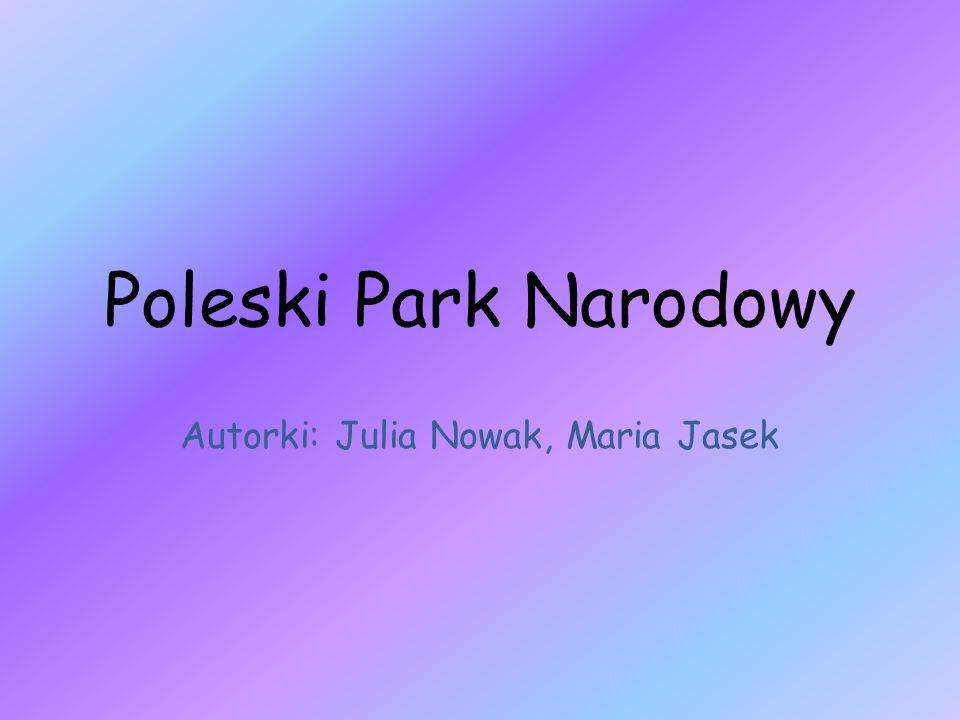 Poleski Park Narodowy Autorki: Julia Nowak, Maria Jasek