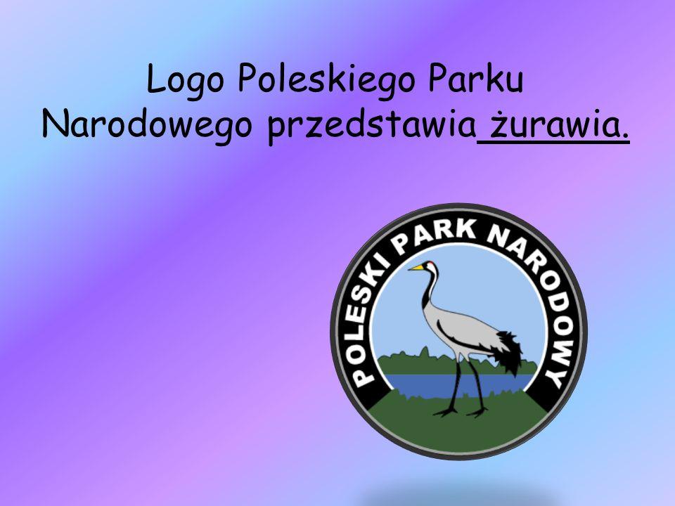 Poleski Park Narodowy zajmuje podmokły i bagienny teren z 20 niewielkimi płytkimi jeziorami.