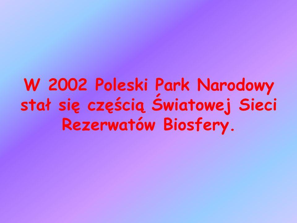 W 2002 Poleski Park Narodowy stał się częścią Światowej Sieci Rezerwatów Biosfery.