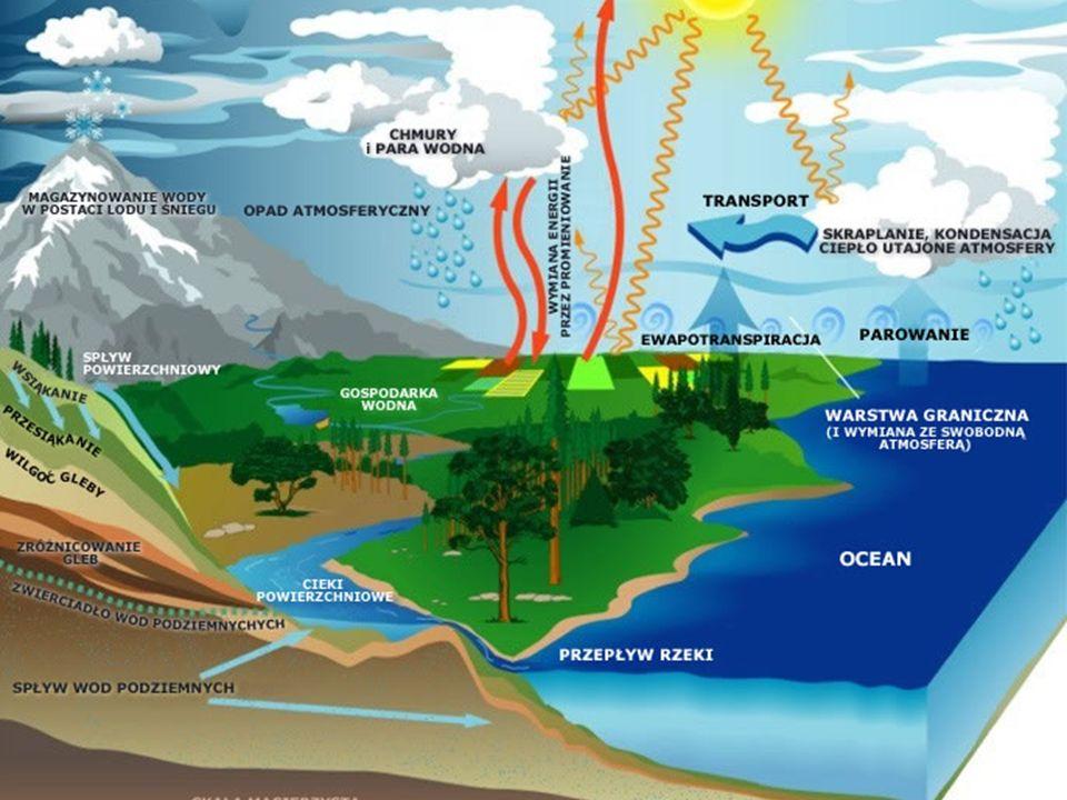 Bradford mówi, że samo odkrycie wody nie jest zaskoczeniem, jednak niezwykła jest jej ilość.