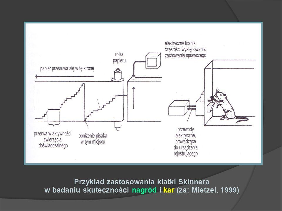 Przykład zastosowania klatki Skinnera w badaniu skuteczności nagród i kar (za: Mietzel, 1999)