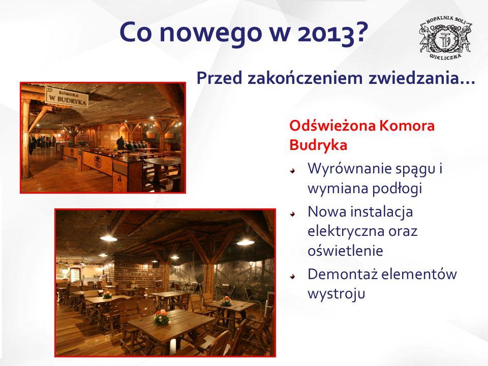 Zakończenie prac nad aranżacją komory Skarbnika Wymiana oświetlenia Przygotowanie siedziska dla turystów Co nowego w 2013.