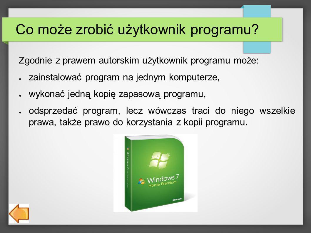 Co może zrobić użytkownik programu.