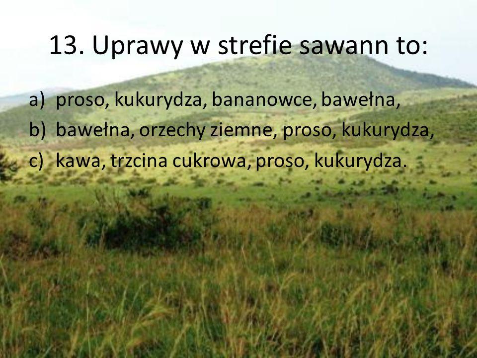 13. Uprawy w strefie sawann to: a)proso, kukurydza, bananowce, bawełna, b)bawełna, orzechy ziemne, proso, kukurydza, c)kawa, trzcina cukrowa, proso, k