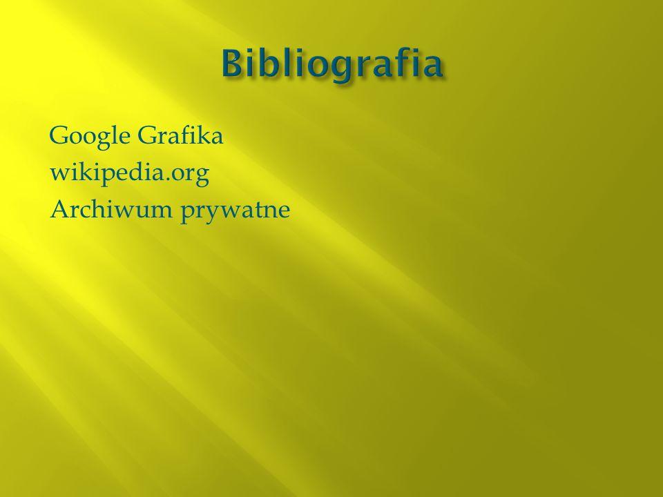 Google Grafika wikipedia.org Archiwum prywatne