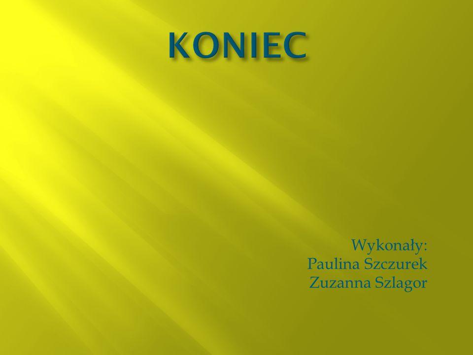 Wykonały: Paulina Szczurek Zuzanna Szlagor
