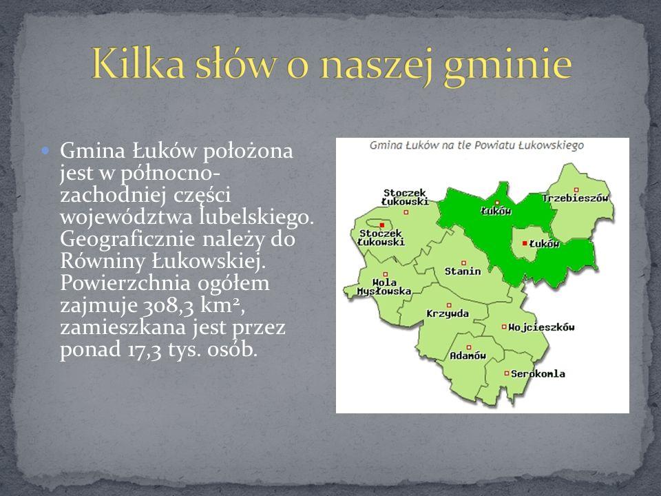 Gmina Łuków położona jest w północno- zachodniej części województwa lubelskiego. Geograficznie należy do Równiny Łukowskiej. Powierzchnia ogółem zajmu