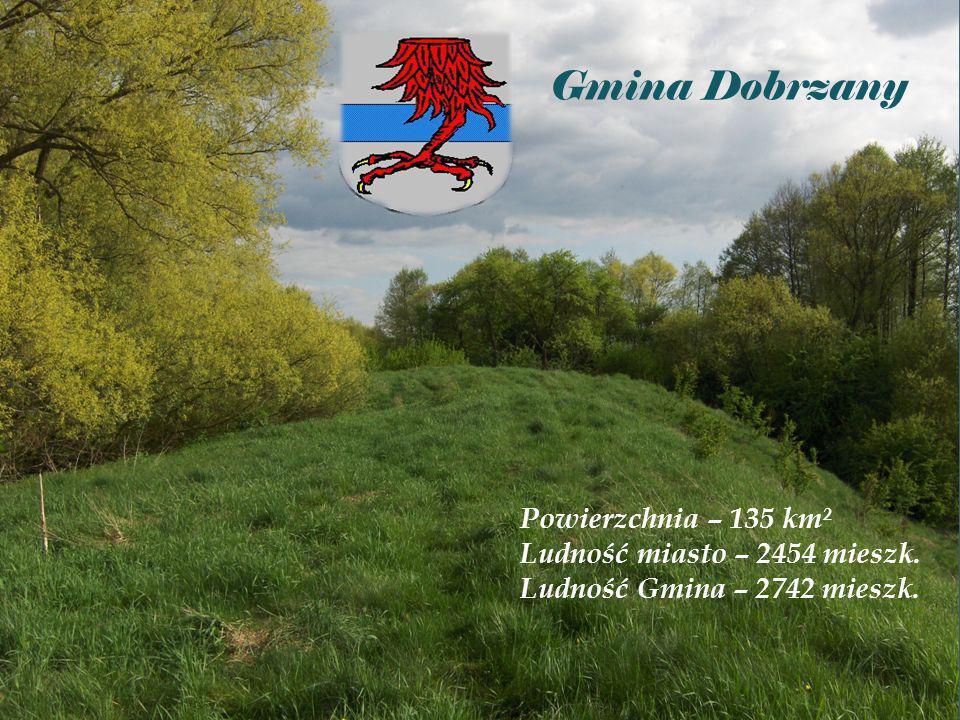 Gmina Dobrzany Powierzchnia – 135 km² Ludność miasto – 2454 mieszk. Ludność Gmina – 2742 mieszk.