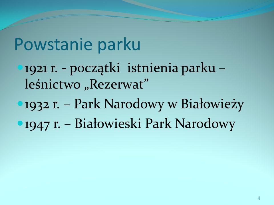 Powstanie parku 1921 r.- początki istnienia parku – leśnictwo Rezerwat 1932 r.