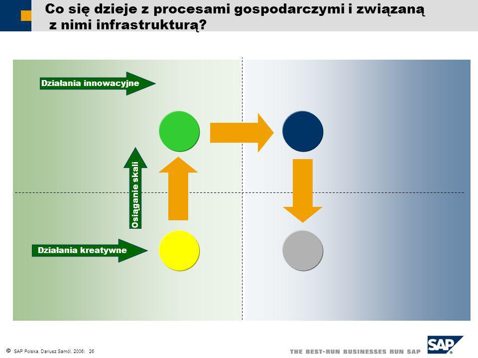 SAP Polska, Dariusz Samól, 2006; 26 Co się dzieje z procesami gospodarczymi i związaną z nimi infrastrukturą? Działania innowacyjne Osiąganie skali Dz