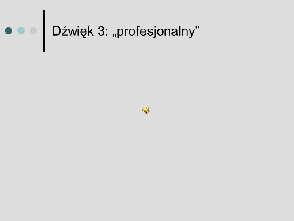 Dźwięk 3: profesjonalny