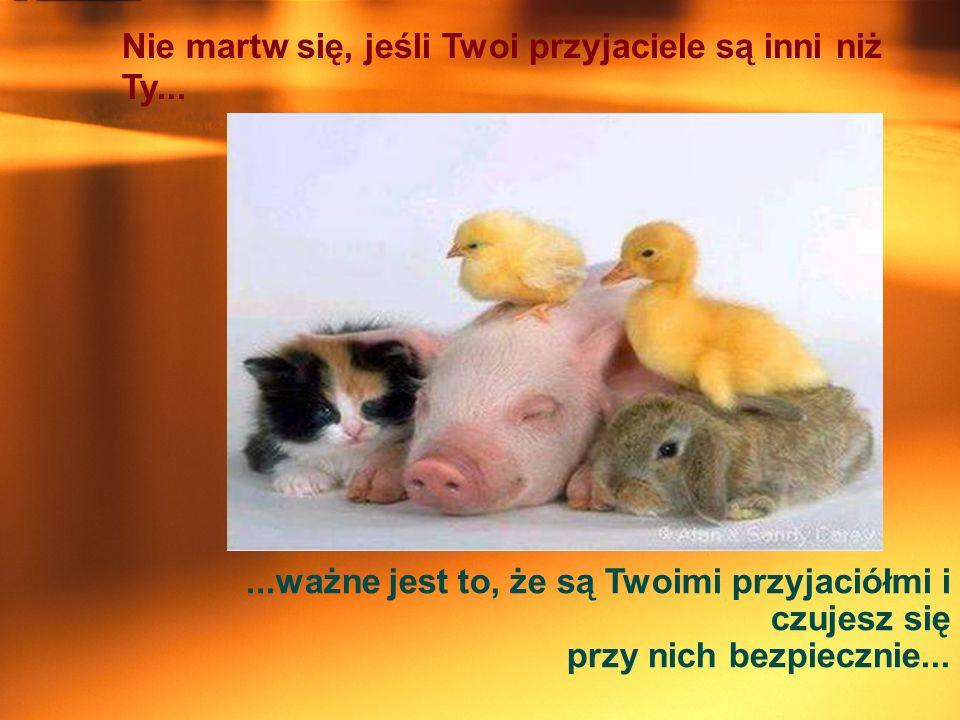 Nie martw się, jeśli Twoi przyjaciele są inni niż Ty......ważne jest to, że są Twoimi przyjaciółmi i czujesz się przy nich bezpiecznie...