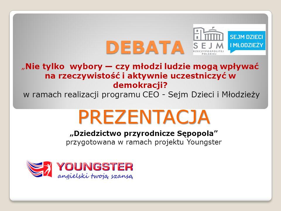 DEBATA Nie tylko wybory czy młodzi ludzie mogą wpływać na rzeczywistość i aktywnie uczestniczyć w demokracji? w ramach realizacji programu CEO - Sejm