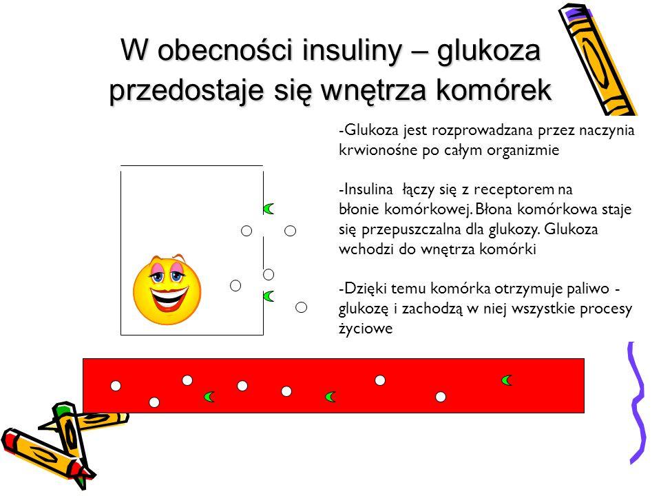 W obecności insuliny – glukoza przedostaje się wnętrza komórek -Glukoza jest rozprowadzana przez naczynia krwionośne po całym organizmie -Insulina łączy się z receptorem na błonie komórkowej.