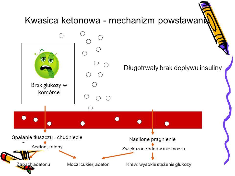 Spalanie tłuszczu - chudnięcie Nasilone pragnienie Brak glukozy w komórce Kwasica ketonowa - mechanizm powstawania Aceton, ketony Zwiększone oddawanie moczu Mocz: cukier, acetonZapach acetonuKrew: wysokie stężenie glukozy Długotrwały brak dopływu insuliny