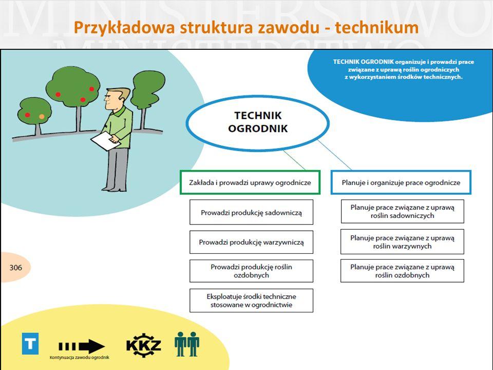 Przykładowa struktura zawodu - technikum