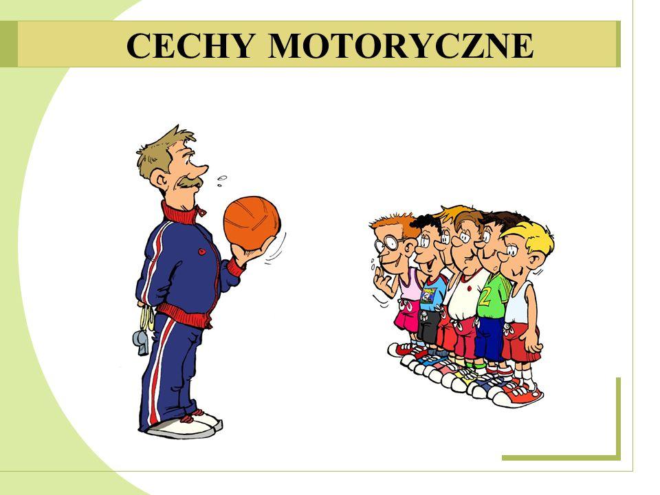 CECHY MOTORYCZNE